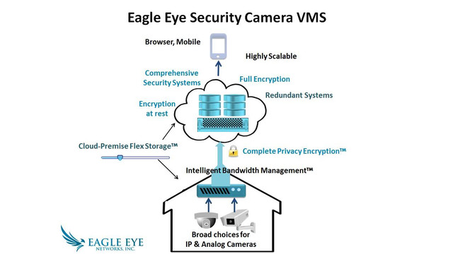 Eagle Eye Security Camera Video Management System (VMS)