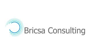 Brisca Consulting