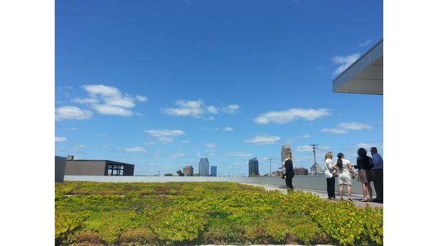 2-Green-Roof.jpg