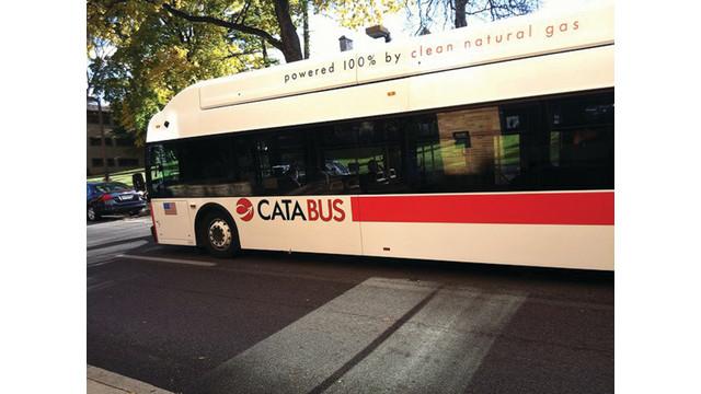 cata-bus_11672191.psd